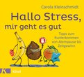 Carola Kleinschmidt - Hallo Stress, mir geht es gut