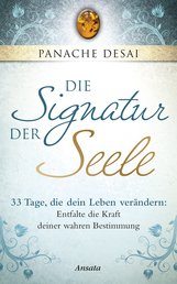 Panache  Desai - Die Signatur der Seele