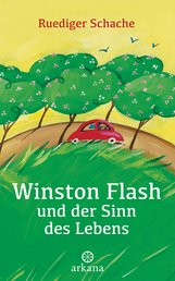 Ruediger  Schache - Winston Flash und der Sinn des Lebens