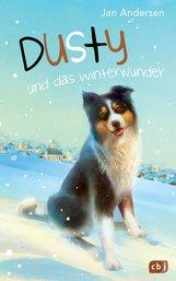 Jan  Andersen - Dusty und das Winterwunder