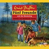 Enid  Blyton - Fünf Freunde und der Hexenring