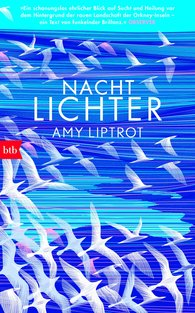 Amy  Liptrot - Nachtlichter
