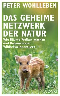 Peter  Wohlleben - The Secret Network of Nature
