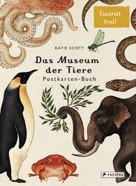 Katie  Scott - Das Museum der Tiere. Postkartenbuch