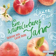 Laura  Dave - Ein wunderbares Jahr